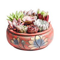 Balcony Bonsai pot indoor Succulent plant pots Green Plant Pot Classic Style Ceramic Flower pot