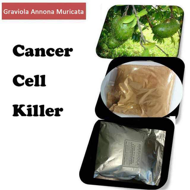 US $32 08 |Cancer Cell Killer Graviola Annona Muricata, Brazilian pawpaw,  Guanaba,200g , graviola extract powder 20:1 herbal medicine on