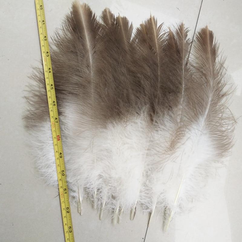 10 Cái/lô Đẹp Tự Nhiên Hawk Lông 20 25 Cm/8 10 Inch Lông Đẹp|feather lot|hawk featherlot of - AliExpress