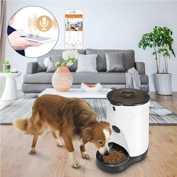 Автоматическая кормушка для домашних животных с 110 ° HD камерой видео Запись голоса в реальном времени обмен 250 мл кормушка для воды для собак