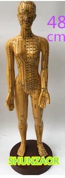 Meridiano modelo feman punto de acupuntura cuerpo humano modelo 48 - Escuela y materiales educativos - foto 1