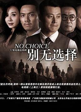 《别无选择》2010年中国大陆剧情,历史,战争电视剧在线观看