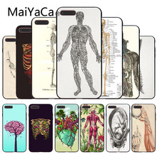 MaiYaCa для iphone 7 6 X Чехол Анатомия человека популярный чехол для телефона для iphone 8 8plus 7 7plus 6 6plus 5 5S 5c SE XS XR XSMAX чехол