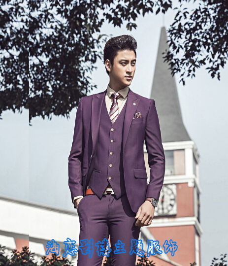 Free shipping ! New Men's clothing purple suit set plus size fashion silm suit vest three piece set formal dress / S-XXL