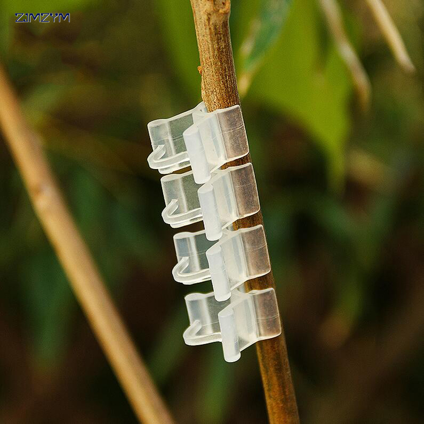 10PC/set New Transparent Durable Plastic Grafting Clips For Garden Vegetable Flower Vine Bushes Plants Tool Equipment