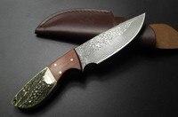 Handmade Damaszek kutej Stali nóż myśliwski naprawiono nóż Palisander + Poroża z skóry wołowej skóry pokrywa