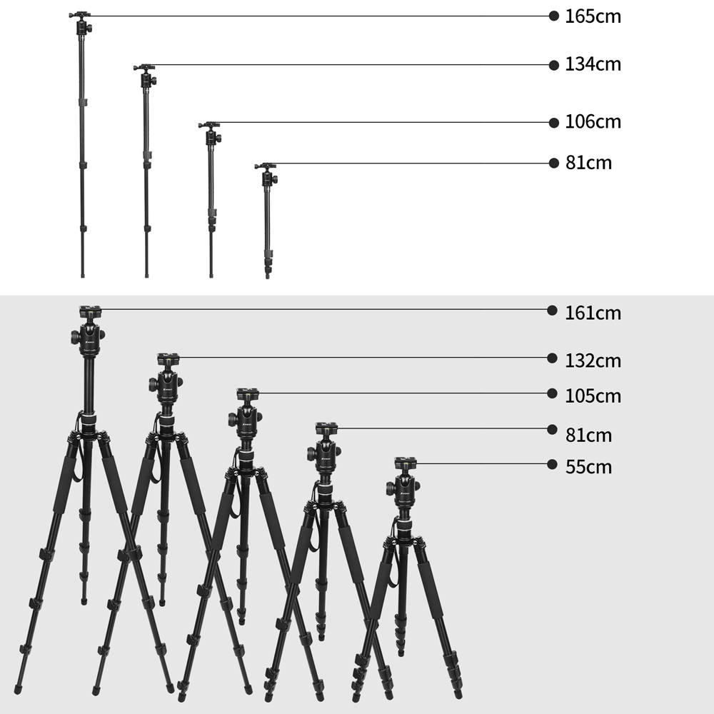 Image 5 - SHOOT Professional Portable Travel Camera Tripod Aluminum Alloy 4 Sections Tripod Stand for Canon Nikon SLR DSLR Digital Camera-in Tripods from Consumer Electronics