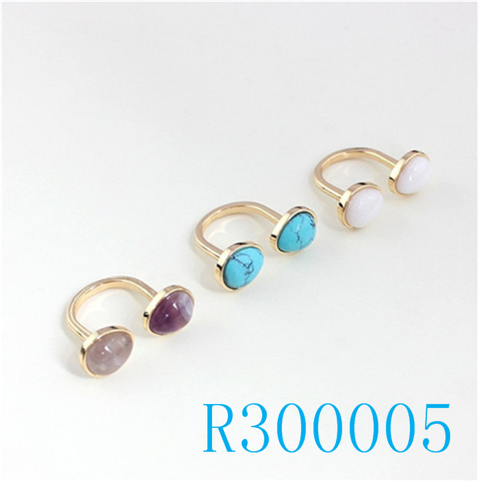 R300005
