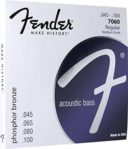 Fender 7060 Phosphor Bronze Acoustic Bass Guitar Strings, Medium Scale, 45-100 ghs strings s315 phosphor bronze