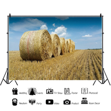 Yeele Farm Hay Bale Rural Countryside Field Scenery Portrait Photography Backgrounds Photographic Backdrops For Photo Studio