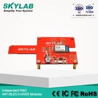 SKYLAB WG215 ESP32 chipset ble WiFi combo Module develoopment EVB EVK Board kits, Programmable EPS 32 development kits