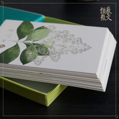 Art Postcard: Aesthetic Plant Illustrations Landscape Creative Card / Antiquity Ancient Style