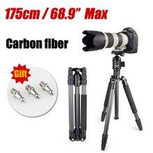 Dic y callos P303C profesional fibra de carbono trípode monopie para cámara DSLR soporte para el tripode altura máxima 175 cm