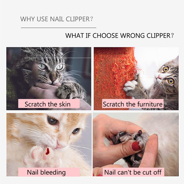 Professional Pet Cat Nail Clipper  My Pet World Store