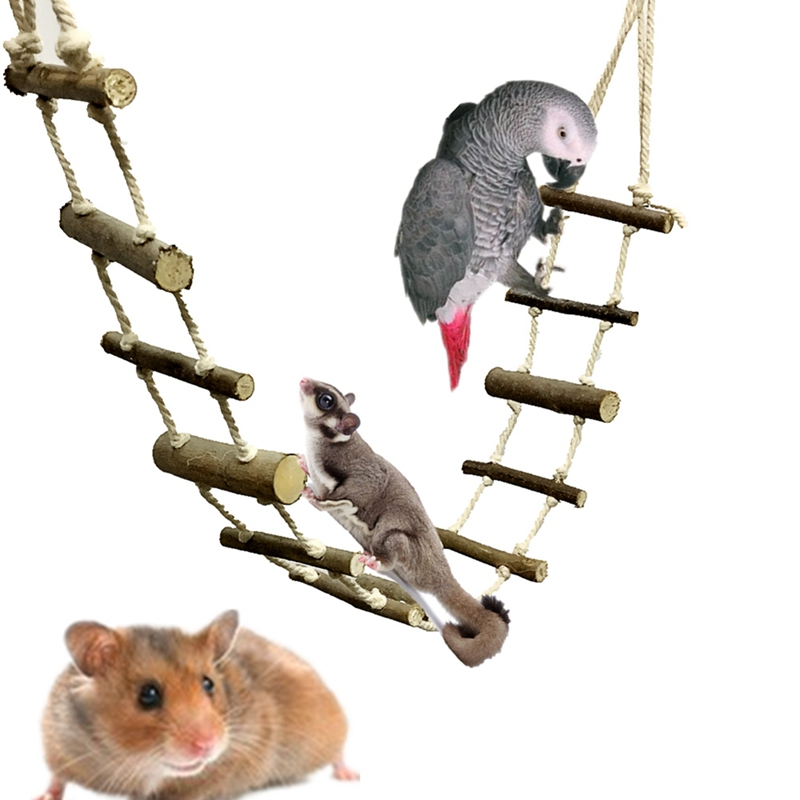 Parrot Swing Ladder Toys Rope Net With Buckles Pet Bird Bites Climb Chew Toys Hanging Cockatiel Swing Parrot Cage Bird Toys