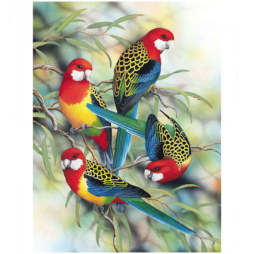 Full & Round 3D Diamond Embroidered Parrot Picture 5D DIY ...