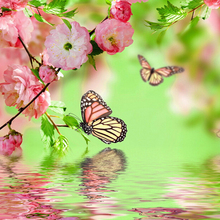 A1362 Diamond Embroidery Home Decor 3DIY Flower Butterfly 100%  Resin Tool dril Painting Cross Stitch Fashion Mosaic Needlework a1405 diamond embroidery home decor 3diy strawberry 100