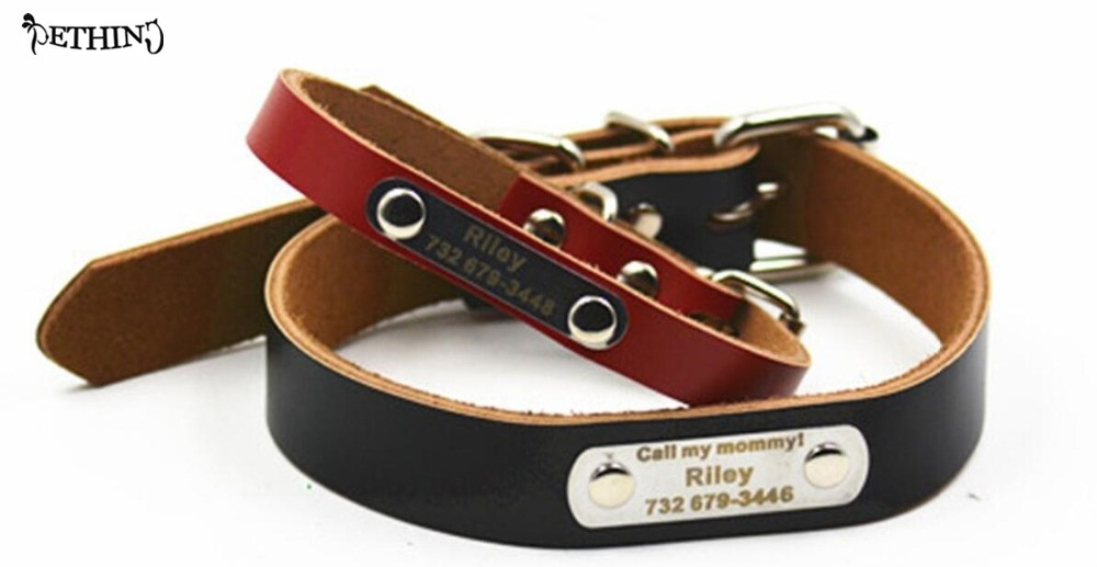 Dog Collar With Name Tag