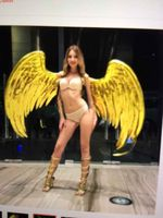 EMS free shipping fashion gold angel wings for dancing stage performance beautiful shooting props Pure handmade