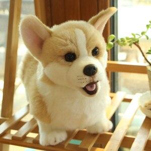 Image 2 - 32cm adorável simulação cão crianças bonecas corgi pelúcia animal de estimação macio brinquedos para crianças presente aniversário decoração coleção brinquedos