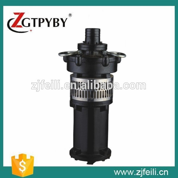 0.75KW 220V 50HZ vertical multistage pump cast iron water fountains waterproof booster pump prorab 6401 нк