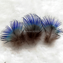 Small Peacock Feathers,200Pieces/lot IRIDESCENT BLUE Plumage feathers,2-4cm long,small and cheap peacock feathers