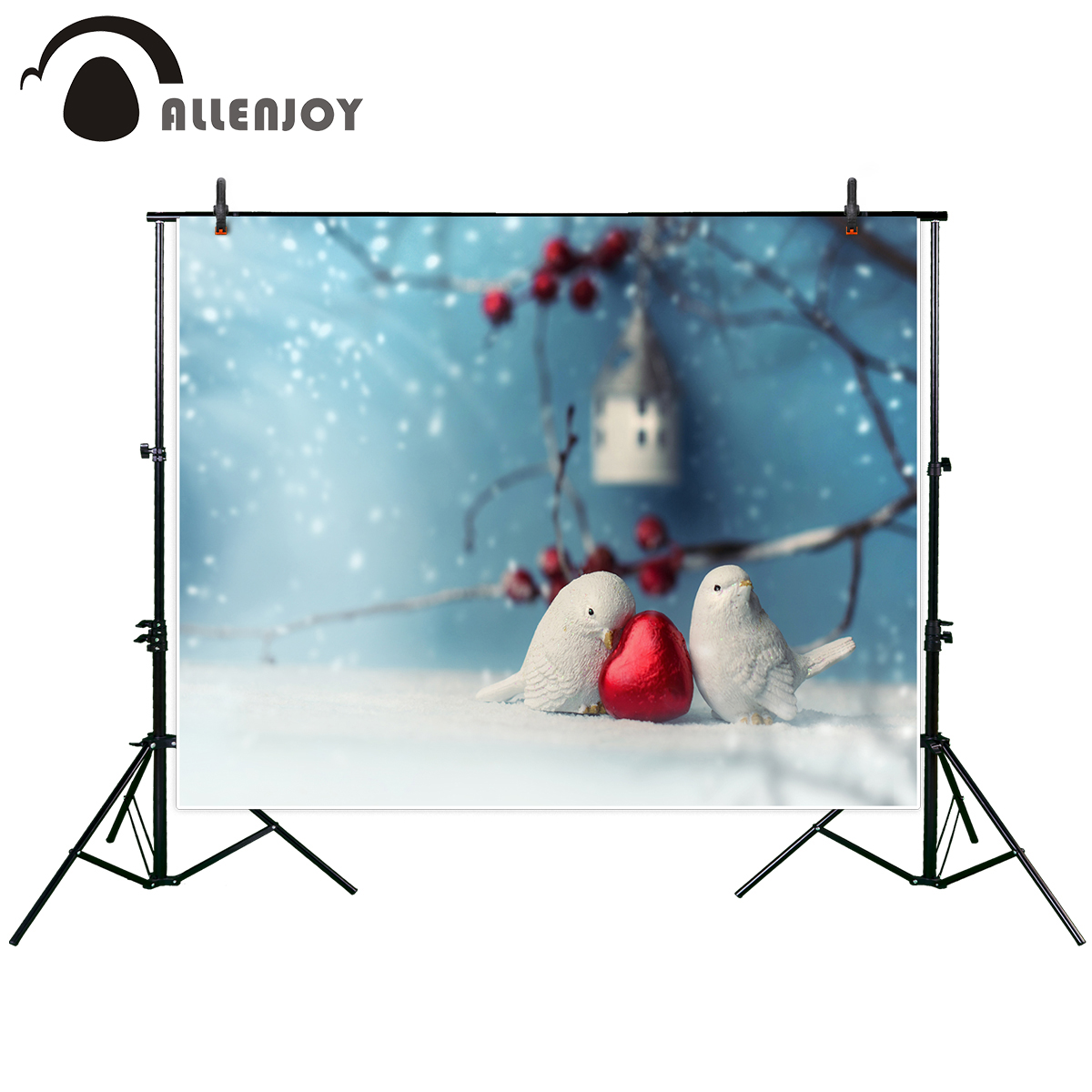 Allenjoy new photography background Two cute ceramic birds in love at winter time Valentine Day photo studio photobooth HD file 8x10ft valentine s day photography pink love heart shape adult portrait backdrop d 7324