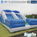 Envío Libre Por El Mar Comercial Inflable Niños Castillo hinchable Saltando Slide