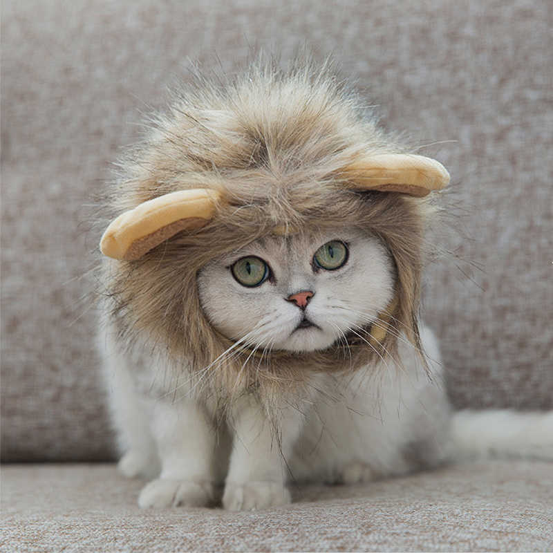 0886f438 Funny Cute Pet Costume Cosplay Lion Mane Wig Cap Hat for Cat Halloween Xmas  Clothes Fancy