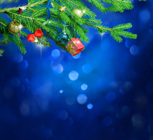 Photography Backdrops Blue Background Green Mistletoe With Christmas Ball font b Photo b font Background For