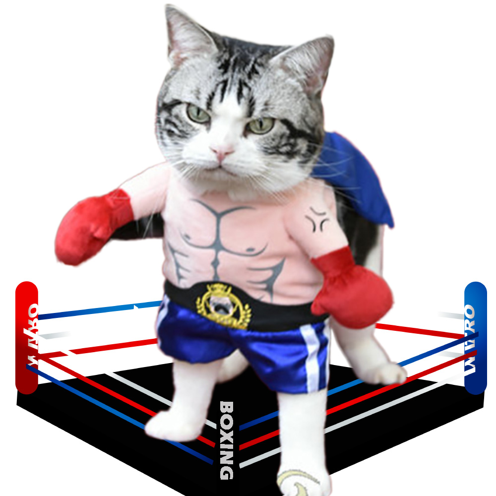 Funny Boxer Costume for Pets Halloween Cosplay Suit Cat Apparel Clothing Clothes For Puppy Dogs Costume for a cat