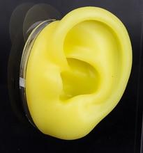 Силиконовая модель уха мягкая модель уха модель человеческого уха Модель моделирования человеческого уха слуховой аппарат дисплей реквизит Обучающие инструменты