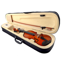 4/4 Full Size Natural Acoustic Violin For Beiginner 6 Colors Fiddle Violino With Case Mute Bow Strings 4 String Instrument RO10