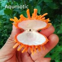 Aqumotic laranja concha natural mar margarida clam spondylidae decoração do tanque de água cerca de 9cm raramente clam beleza aquário decoração|Conchas e estrelas do mar|   -