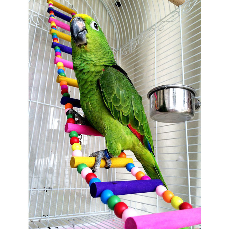 best budgie harness near me and get free shipping - a265