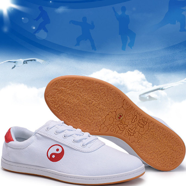 White Chinese Yin Yang Practice Shoes