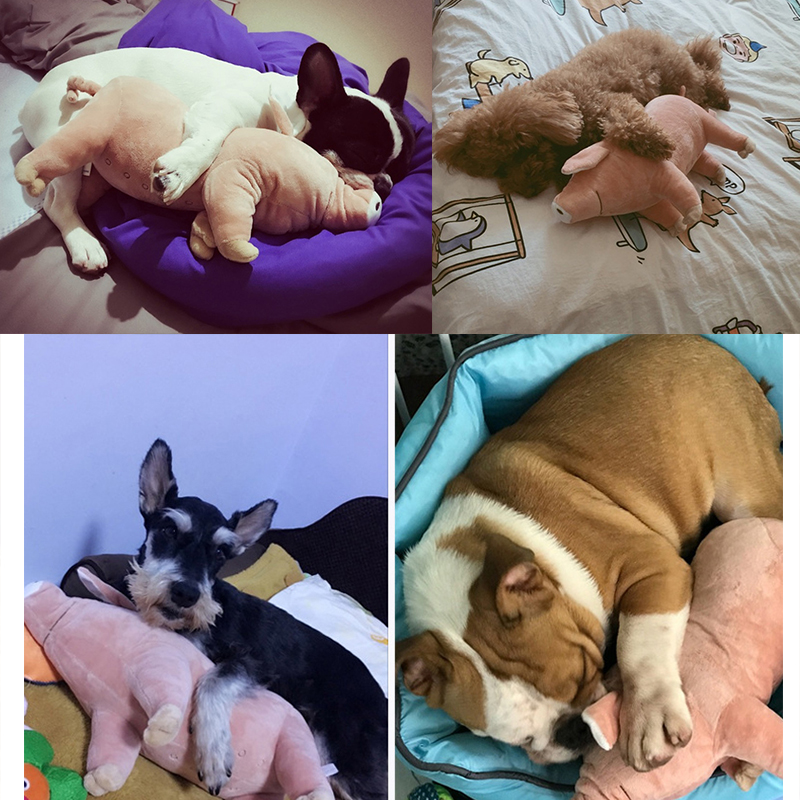 Pet-Dogs-Toys-Accompany-Sleeping-Pigs-Toys-Warm-Soft-Plush-Cotton-Sleeping-Partner-for-Puppy-Dogs (5)