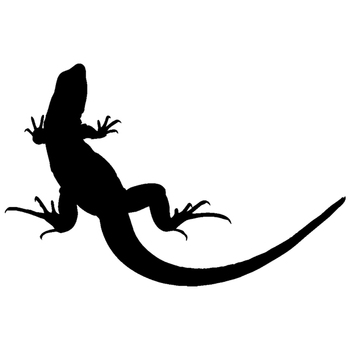 CS-823#20*13cm car sticker lizard funny car sticker vinyl decal silver/black for auto car stickers styling car decoration image