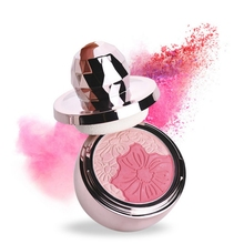 4 Colors Pure Mineral Blush Face Check Blusher Powder with Mushroom Sponge Cosmetic Conven