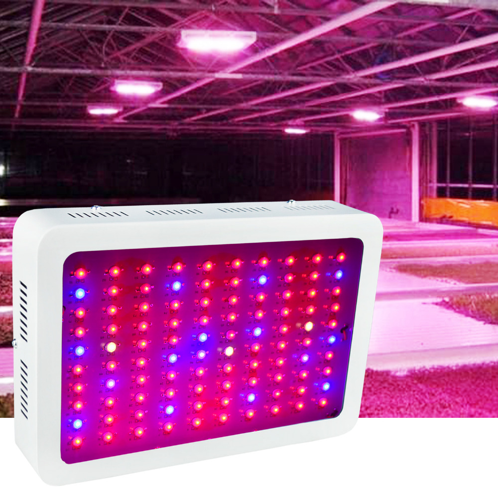In USA, 1000W Full Spectrum LED Grow Light,100-265V Input,Special Design for Indoor Growing Herbs and Medical Plants (100X10W)