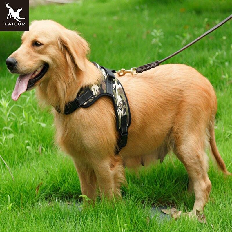Easy Walk Large Dog Harness