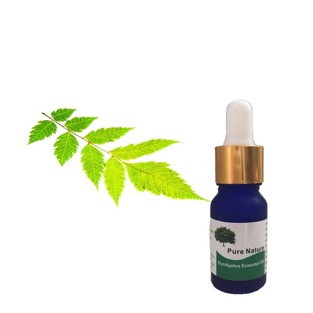 Eucalyptus Essential Oil for Scar and Wrinkle Treatment