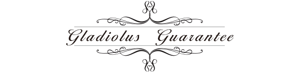 Gladiolus-Guarantee