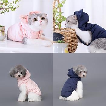 cat clothing for cat