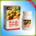 Natural Cogumelo Hericium Produtos Ganho de Peso Gainer Peso Suplemento Natural para Homens/Mulheres