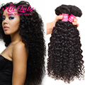 Brazilian Water Wave Virgin Hair 4 Bundles Human Hair 7A Unprocessed Brazilian Curly Virgin Hair Brazilian Hair Weave Bundles