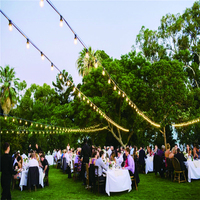 2017 hot sale PVC material daisy elecltric garden party string light with edison bulbs for wedding event 48ft 15 sockets