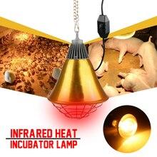 Лампа для инкубатора и курица 250 Вт, Регулируемый переключатель для птицы, инфракрасная лампа для домашних животных, светильник для выращивания цыплят, поросят, утенок, теплый