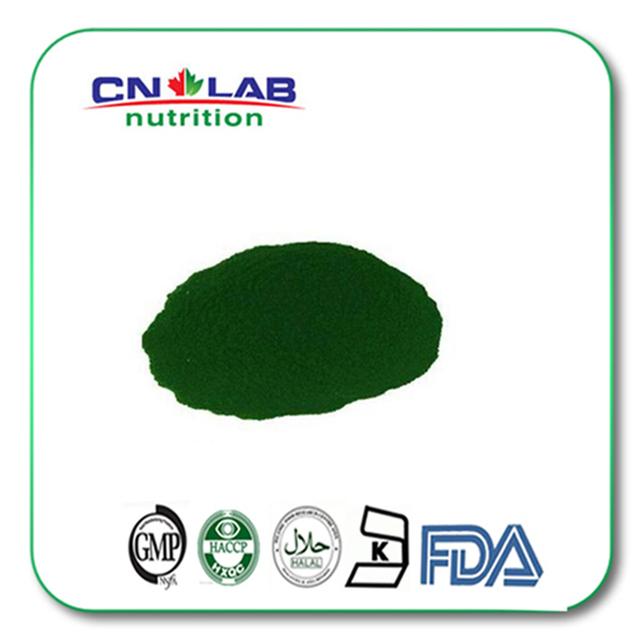 100% puro extrato de algas marinhas naturais Spirulina em pó/pó de Chlorella em pó