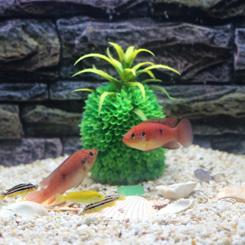 Achetez en gros poisson magique aquarium en ligne des for Gros poisson aquarium